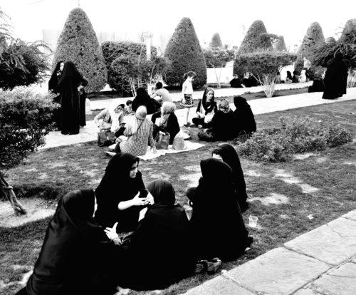 picnicdonne